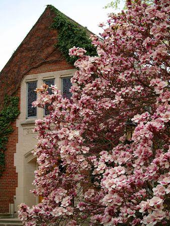 Michigan State University Alumni Chapel in the springtime