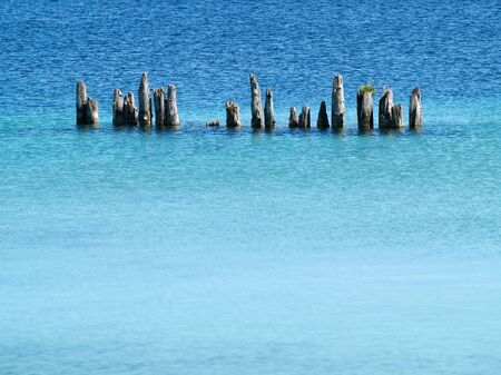 wooden pylons surrounded by blue water