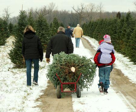 クリスマス ツリーのファミリー 写真素材