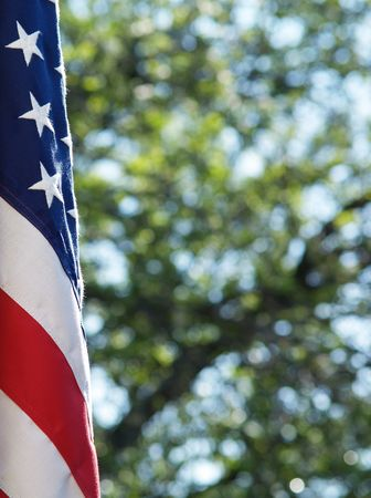 US flag with tree in background Stock Photo