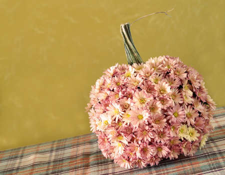 a pumpkin decorated with mums for autumn Stock Photo