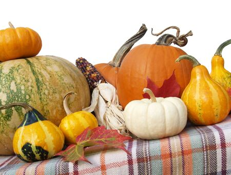 an assortment of fall gourds, squash and pumpkins for Thanksgiving