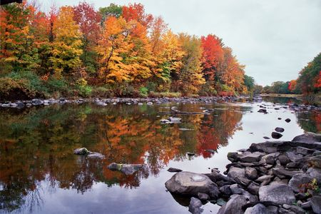river: Fall Foliage along the River Stock Photo