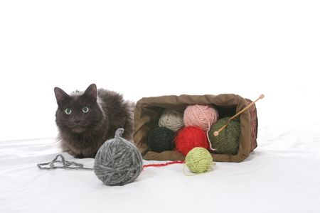 black cat tipped over knitting basket