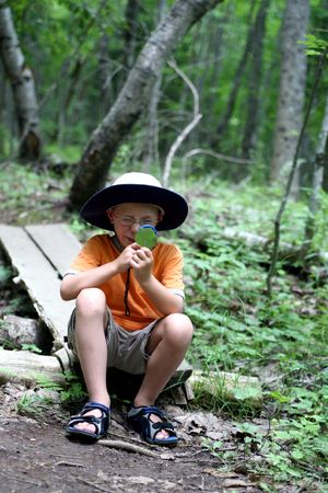young boy looking through magnifying glass at a leaf found on the hiking  trail Standard-Bild