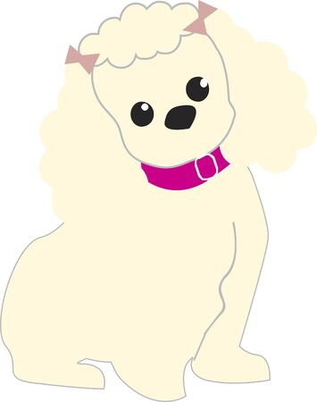 A dog with a pink collar and bows in her hair