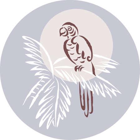 perching: A tropical bird perching on a tree