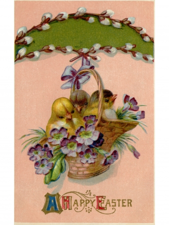 hanging basket: A vintage Easter postcard of a basket full of chicks and violets hanging from a pussy willow branch