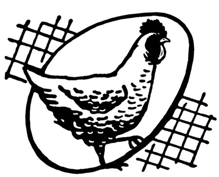 A black and white version of a hen with an egg silhouetted behind Zdjęcie Seryjne