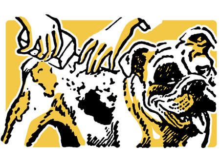 panting:  An illustration of a Bulldog having a wash Stock Photo