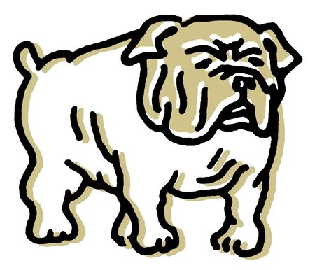 A line drawing of a Bulldog