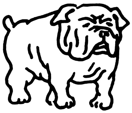 A black and white version of a line drawing of a Bulldog