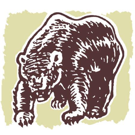 An illustration of a fierce looking bear
