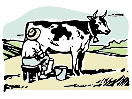 A man milking a cow in a field Stock Photo