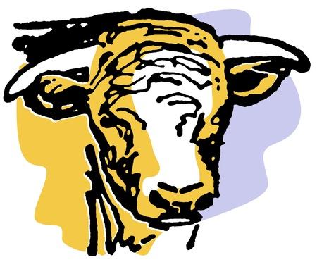 A portrait of an aged bull