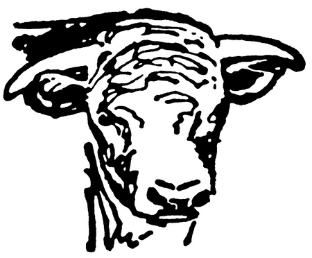 A black and white version of a portrait of an aged bull