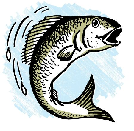 An illustration of a fish out of water illustration