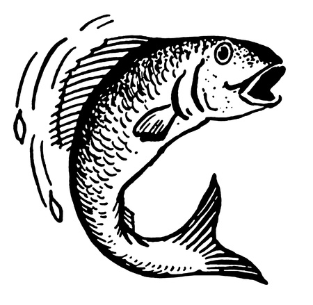 A black and white version of an illustration of a fish out of water illustration