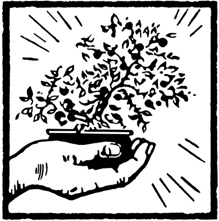 A black and white version of a print of a hand holding a Bonsai tree photo