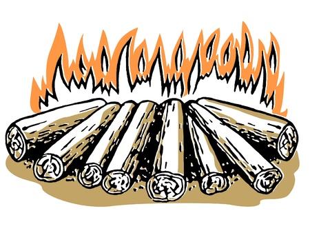 open flame: A log fire