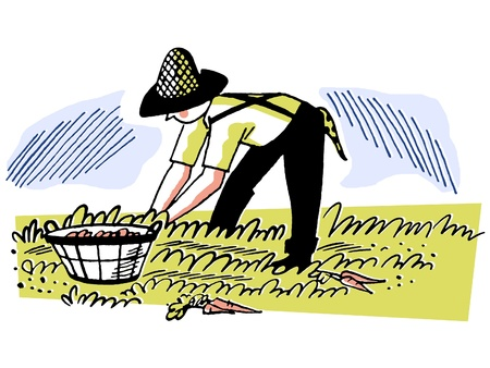 front or back yard: An illustration of a man working in the fields