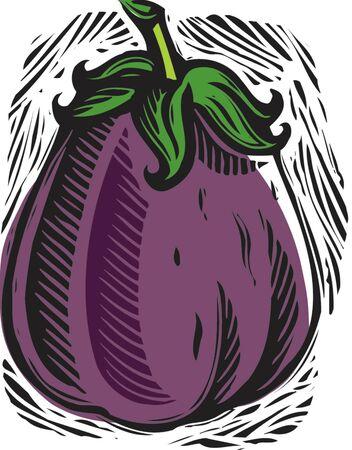 stephanie carter: fresh eggplant