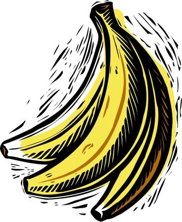 a bunch of bananas Stock Photo - 15209111