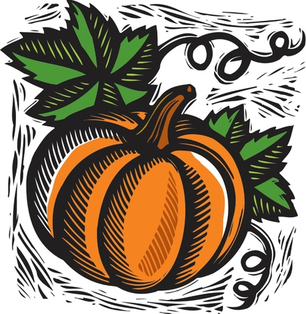 stephanie carter: pumpkin Stock Photo