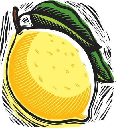 fresh lemon Stock fotó