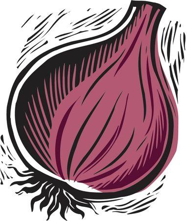 fresh purple onion