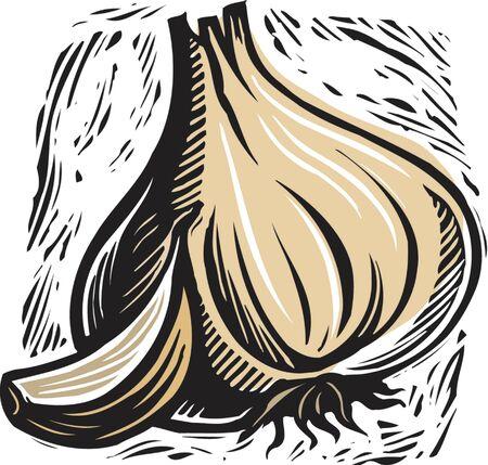 garlic and clove of garlic