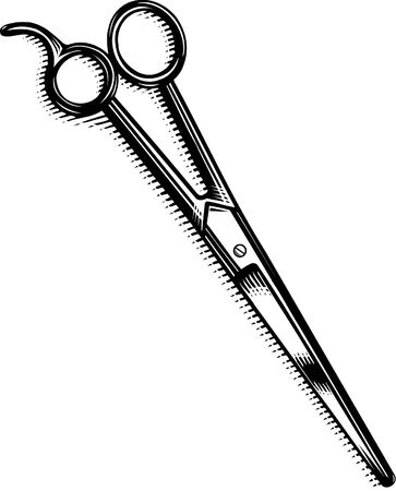 scratchboard: A pair of  scissors Stock Photo
