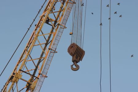 The a giant hook dangles down from a giant crane. Birds use it as a perch.
