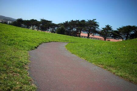A lone path through a green field of grass.
