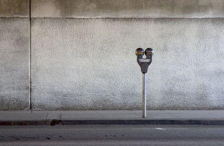 parking violation: A parking meter under a freeway overpass.