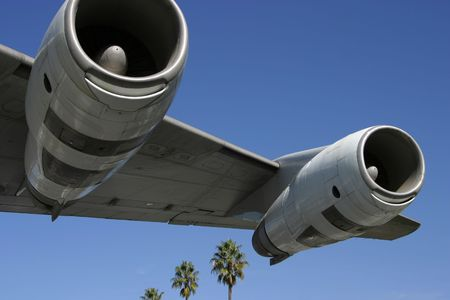 underbelly: A section of a jumbo jet, viewed from below, with palm trees trailing behind.