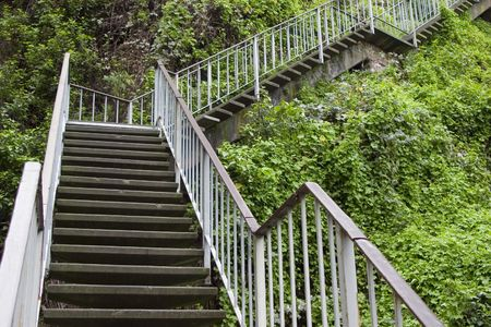 Step steps go up the side of a hillside full of green vegetation.