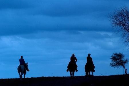 rancho: Vaqueros de montar sus caballos recortada contra un cielo azul Foto de archivo