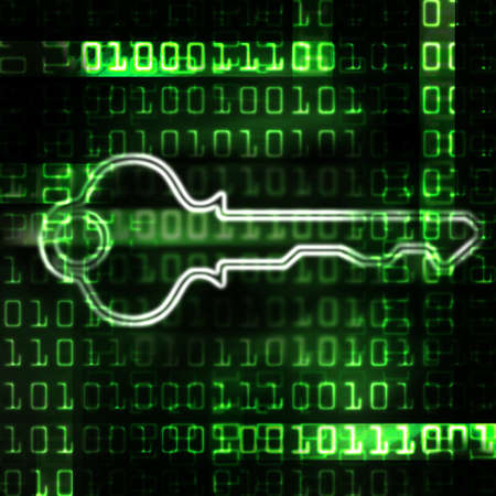 enabled: security key and binary code abstract illustration