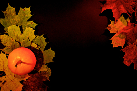 Autumn leaves and pumpkin on dark background