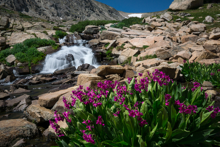 natue: Indian Peaks Wilderness in August.  Ward, Colorado.
