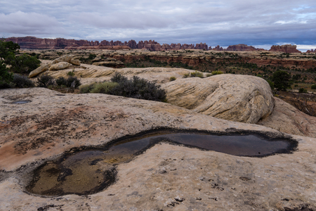 A pothole in front of the needles, in the backcountry of Canyonlands National Park