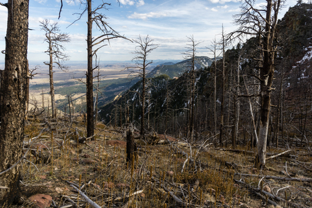 From near the summit of Bear Peak, a view to the south, towards Golden.