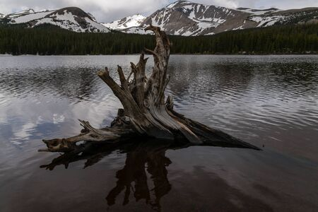 Brainard Lake Recreation Area - Ward, Colorado. Stockfoto - 125225579
