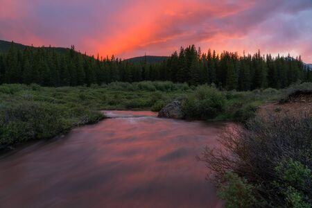 Dispersed camping near Guanella Pass, Colorado. Stockfoto