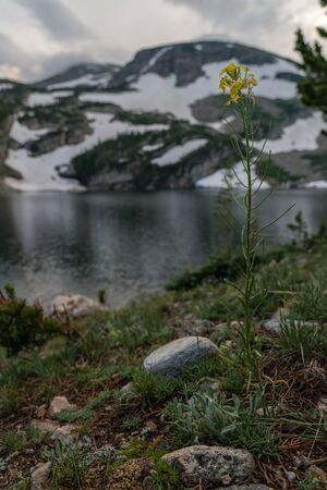 Sunset at an alpine lake in Colorados Indian Peaks Wilderness.