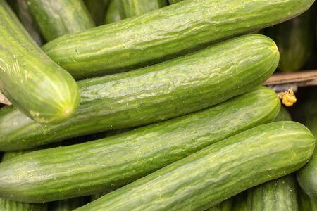 Concombres verts sur étagère en supermarché. Manger bio. Détaillant agricole. Nourriture du fermier.