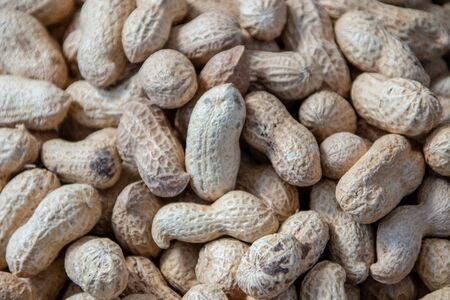 peanut in a shell texture. food background of peanuts Imagens