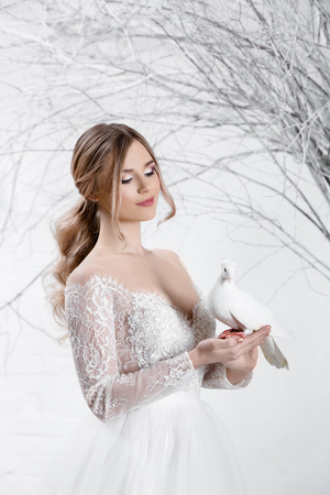 Young beautiful blonde bride in white lace dress holds a white dove Stock Photo