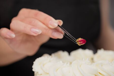 An attractive young female brunette confectioner decorates a white cake with small red flowers of food rose with tweezers. On a dark gray background.